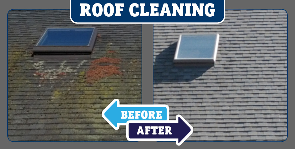 Asphalt Shingle Roof Cleaning American Safe Wash